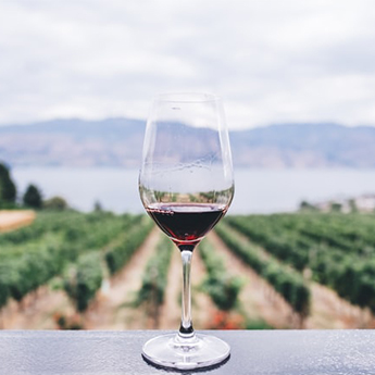 To realise value, SA Wine needs to speak with one